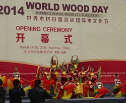 World Wood Day in China